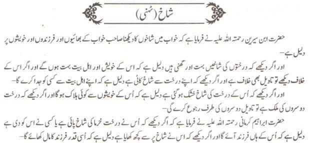 Khawab Nama Khwab Main Tehni Shakh Dekhna