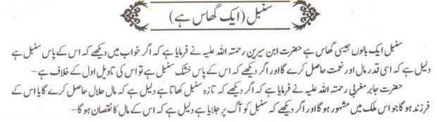 Khwab Main Sunbal Dekhne Ki Tabeer khawab ki tabeer