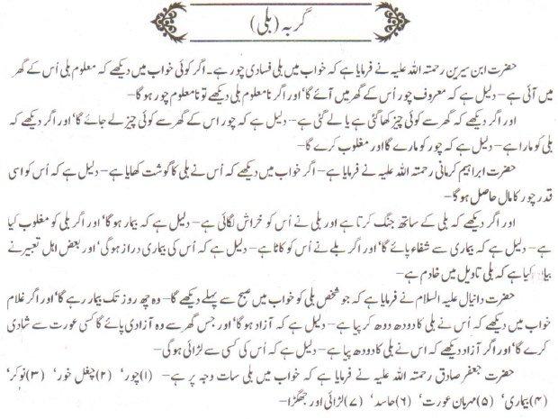 Khawab Nama Khwab Main Billi Dekhna