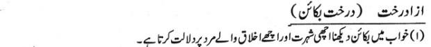 khwab nama khwab main darakht e bakain dekhna