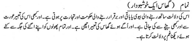 khwab nama khwab main ghaas khushboo dar dekhna
