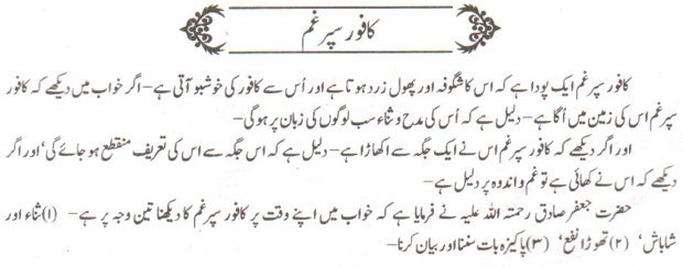 khwab nama khwab main kaafoor sapargham dekhna